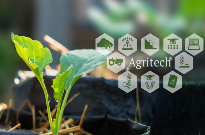 10 Important Indian Agritech Startup Companies Of The Year 2021