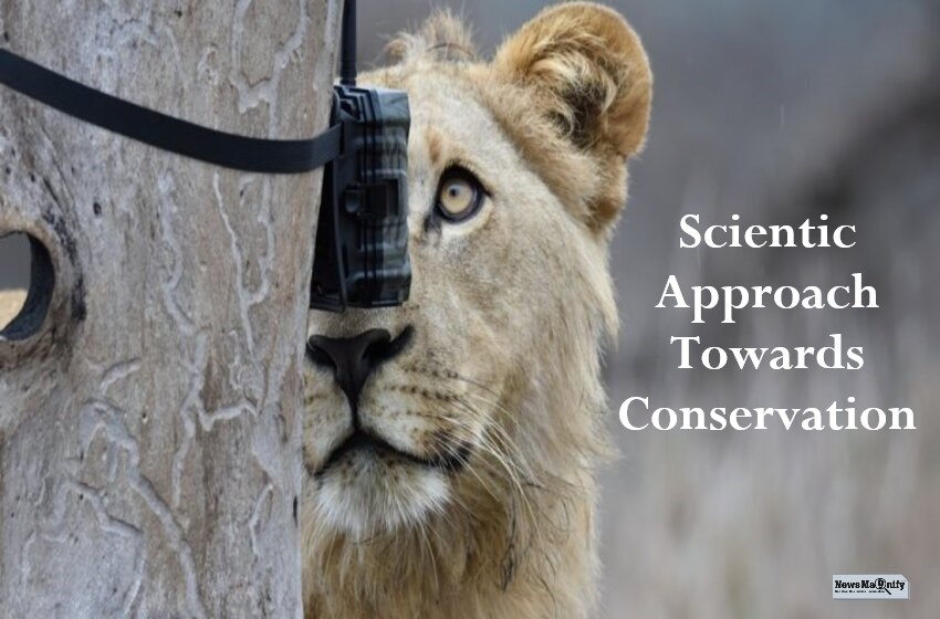 How Are Science Innovations Changing Conservation In The Year 2021?