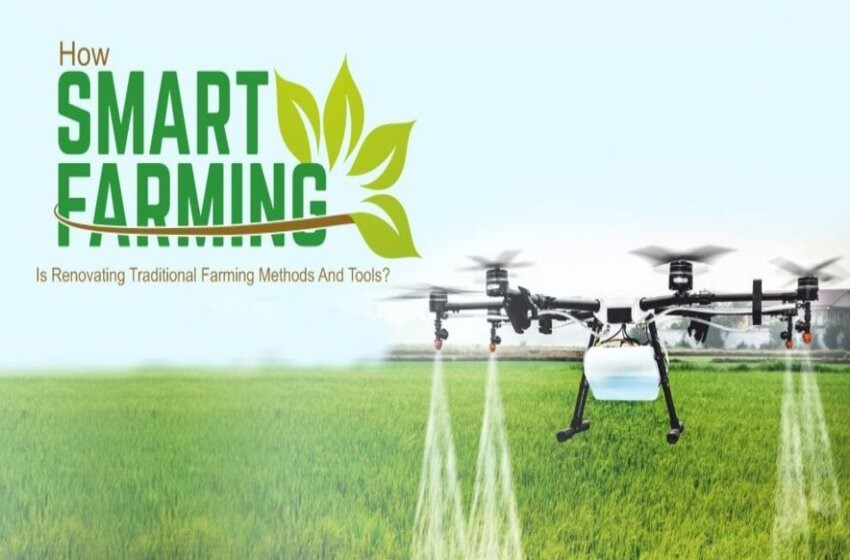 Smart Farming: Why Is It Important In Agriculture?