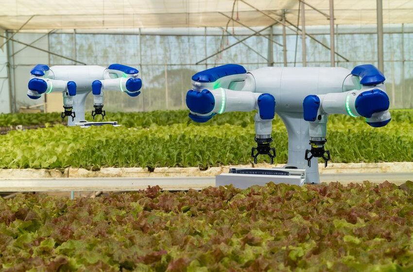 How Are Technological Innovations In Agriculture Changing The Future?