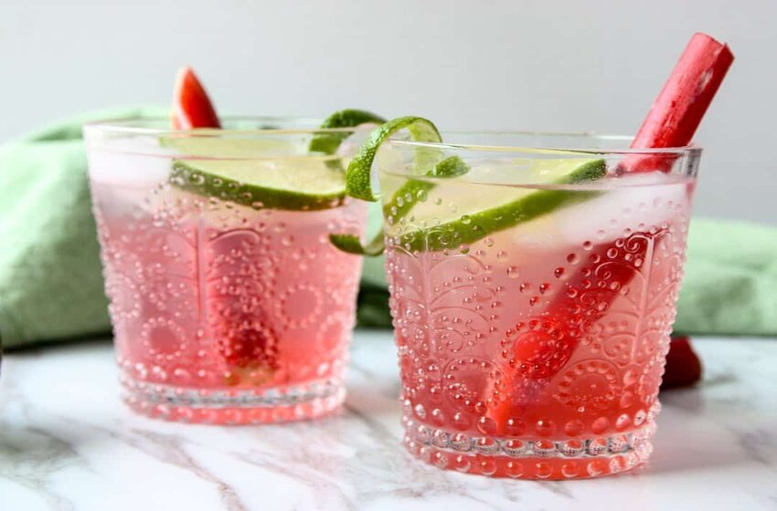 Rhubarb Gin Recipe: Try Making It At Home Easily